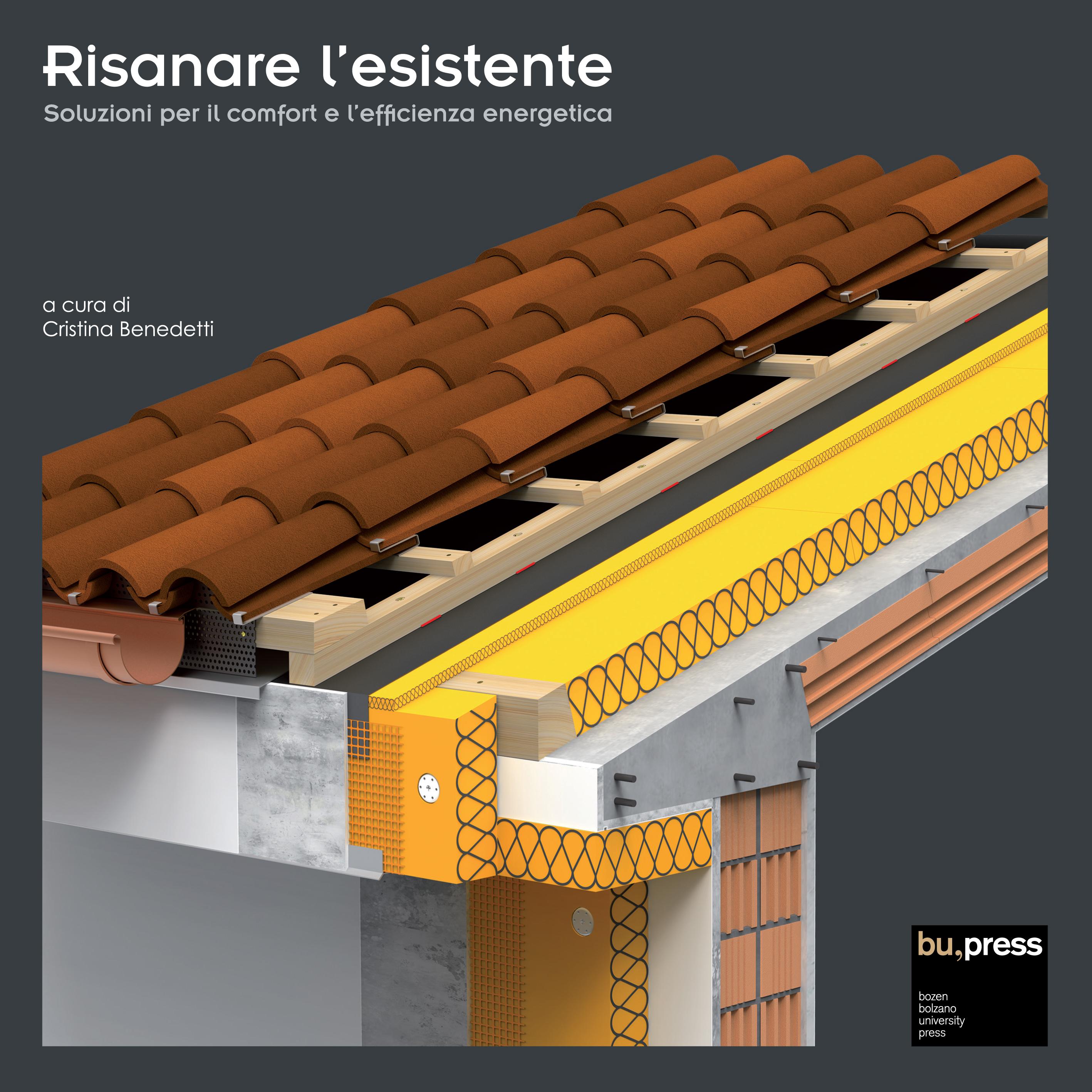 Cover of Risanare l'esistente