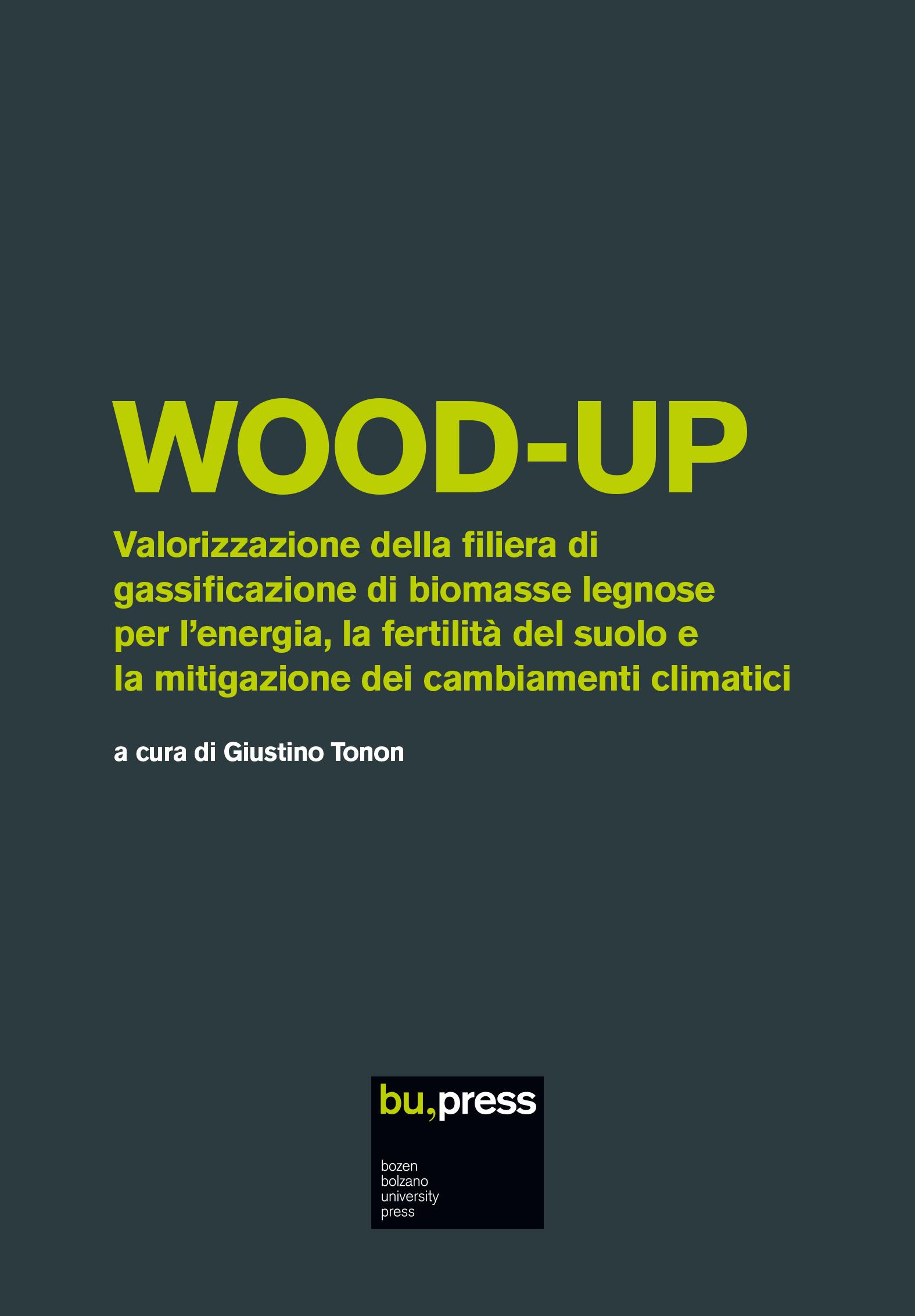 Cover of WOOD-UP – Valorizzazione della filiera di gassificazione di biomasse legnose per l'energia, la fertilità del suolo e la mitigazione dei cambiamenti climatici
